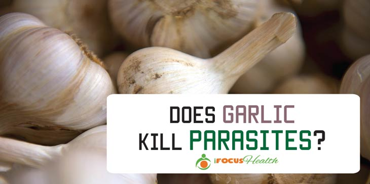 Organic Parasite Cleanse - Your Low-cost Technique to a Better Wellness